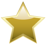 Gold Star Partner